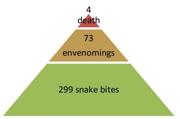 Number of snake bite victims, envenoming and snake bite deaths