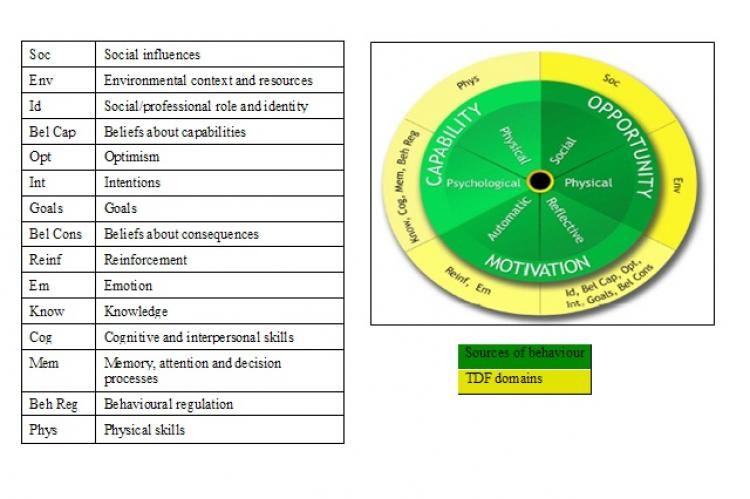 Theoretical domains framework
