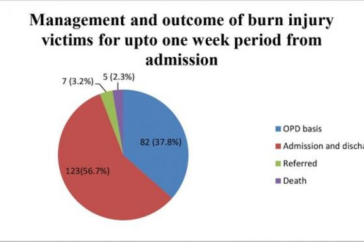 An Epidemiologic Study of Patients Presenting with Burns and Scald Injuries to a Government Medical College Hospital in Karnataka
