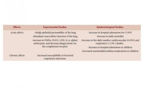Health effects of increased surface ozone