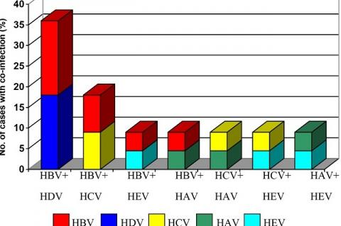 Co-infection pattern among different virus.