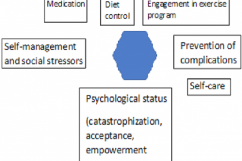 Figure 1: Cycle of Chronic Care Model for Diabetic patient.