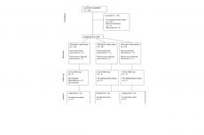 Table 1: CONSORT Diagram